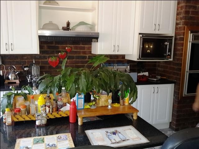 Rangeview property to rent. Ref No: 13402153. Picture no 15